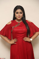 Poorna in Maroon Dress at Rakshasi movie Press meet Cute Pics ~  Exclusive 180.JPG