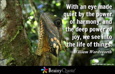 happy quotes: with an eye made quiet by the power of harmony,