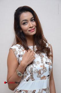 Telugu Actress Reshmi Thakur in Long Dress at Plus One ( 1) Audio Launch  0037.jpg