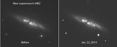 Image of Before and after photos of the galaxy M82 showing the appearance of a  brand new 11.7 magnitude supernova. E. Guido, N. Howes, M. Nicolini
