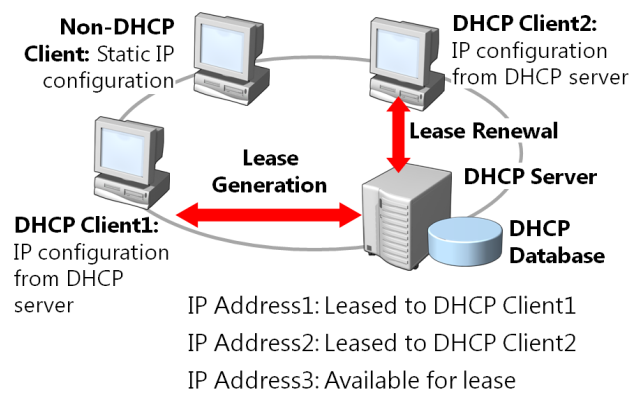 IT Learning: The Allocates IP Addresses process of DHCP