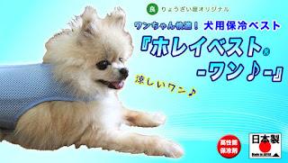 犬用熱中症対策グッズ