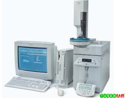 Sherlock Microbial Identification System incorporates Agilent gas chromatograph; model #6850.