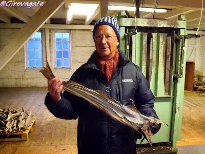Magic Norway stoccafisso