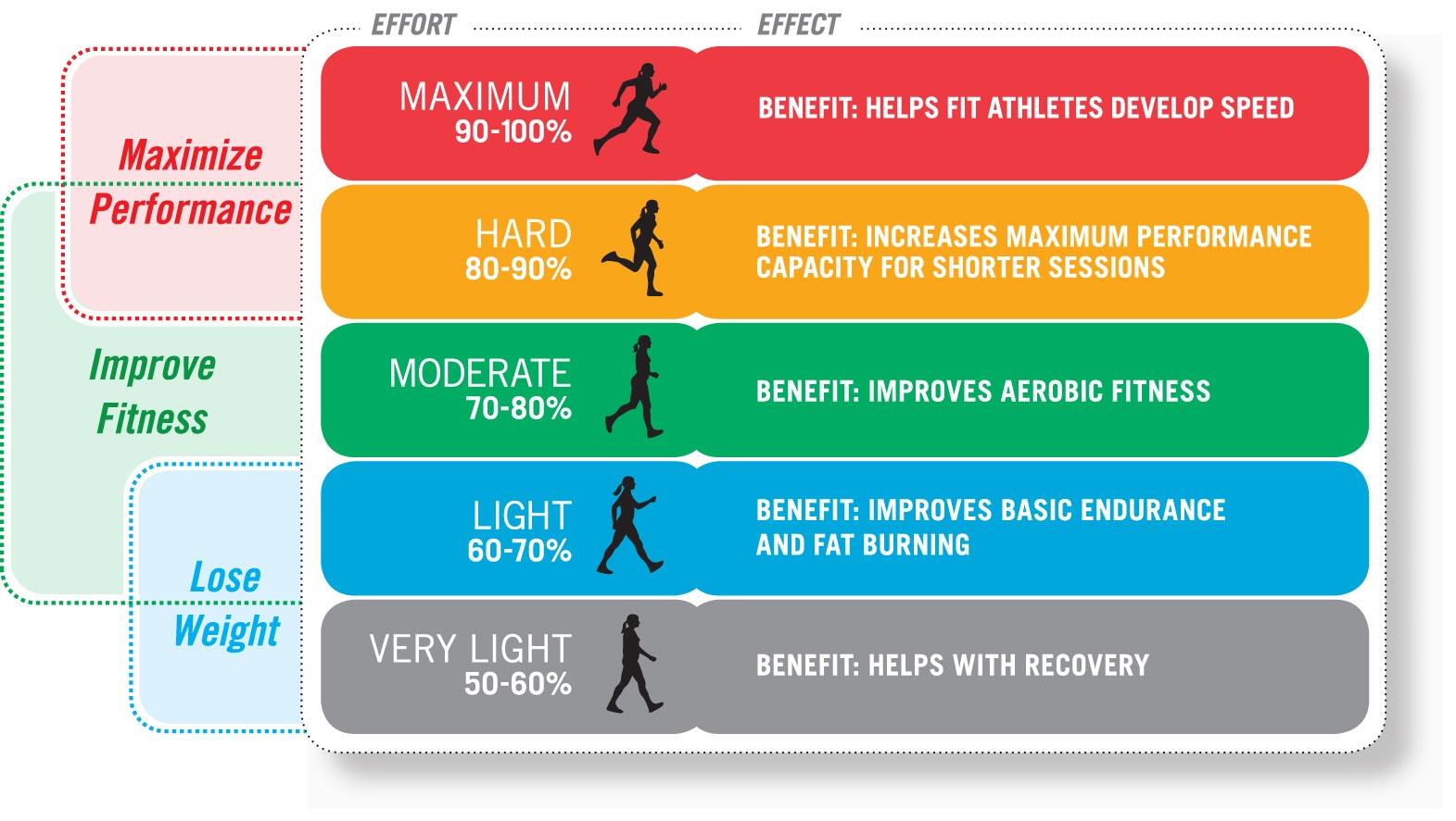 Printables Target Heart Rate Worksheet target heart rate worksheet abitlikethis calculator healthy forms healthy