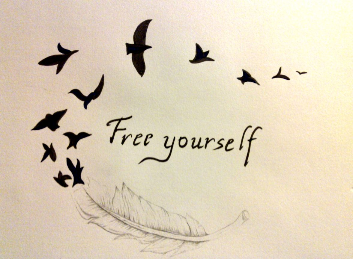Flying Bird Drawing Tumblr Wallpapers Home Screen