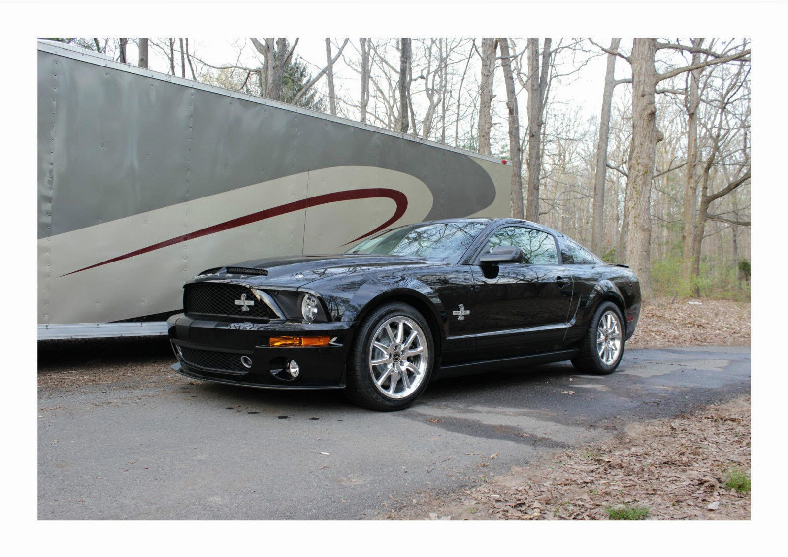 2008 ford mustang shelby gt500kr for sale american muscle cars. Black Bedroom Furniture Sets. Home Design Ideas