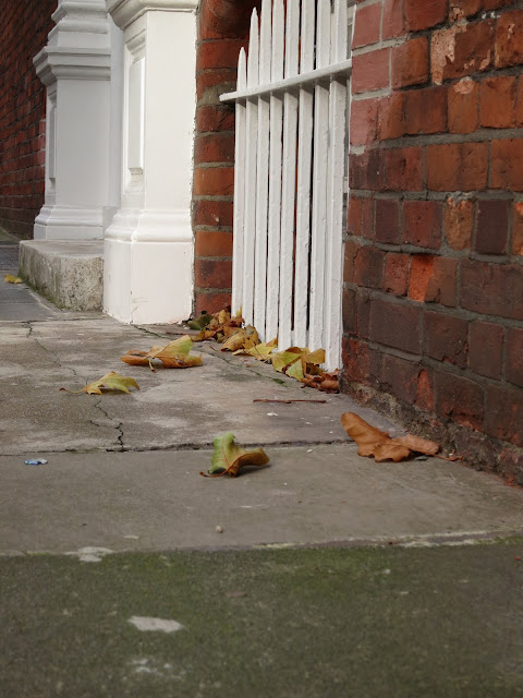 Autumn leaves blown against white painted railings protecting basement in London street.
