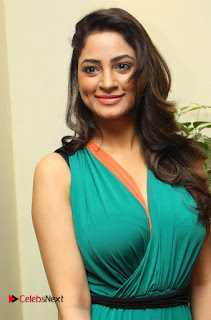 Actress Shilpi Sharma Pictures in Green Dress at D'sire Exhibition Launch  0002.jpg