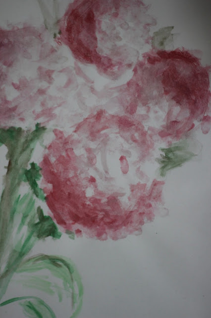 piwonia akwarele, różowe piwonie