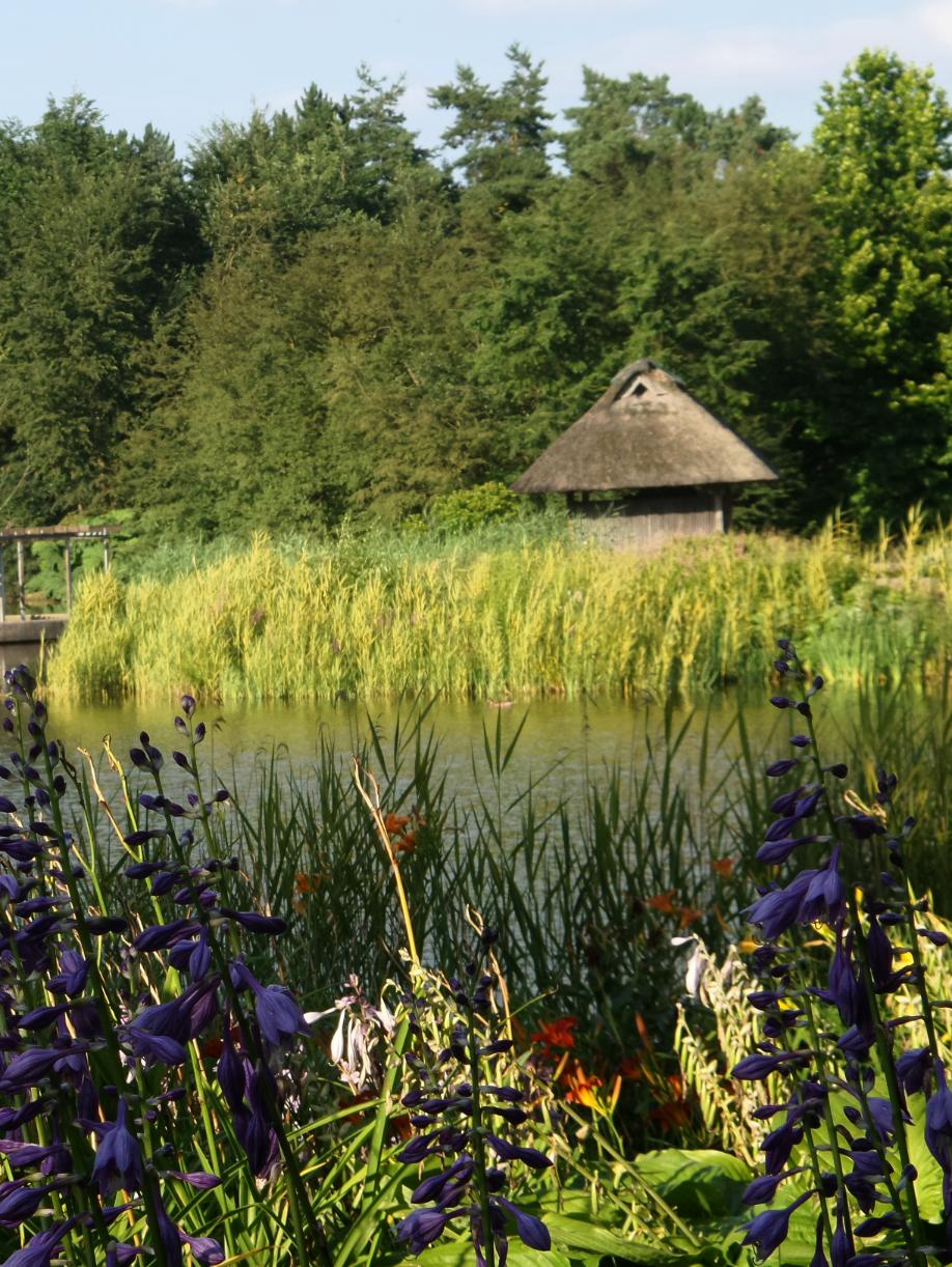 Gartenzelt Hamburg : Fotografie es grünt und blüht