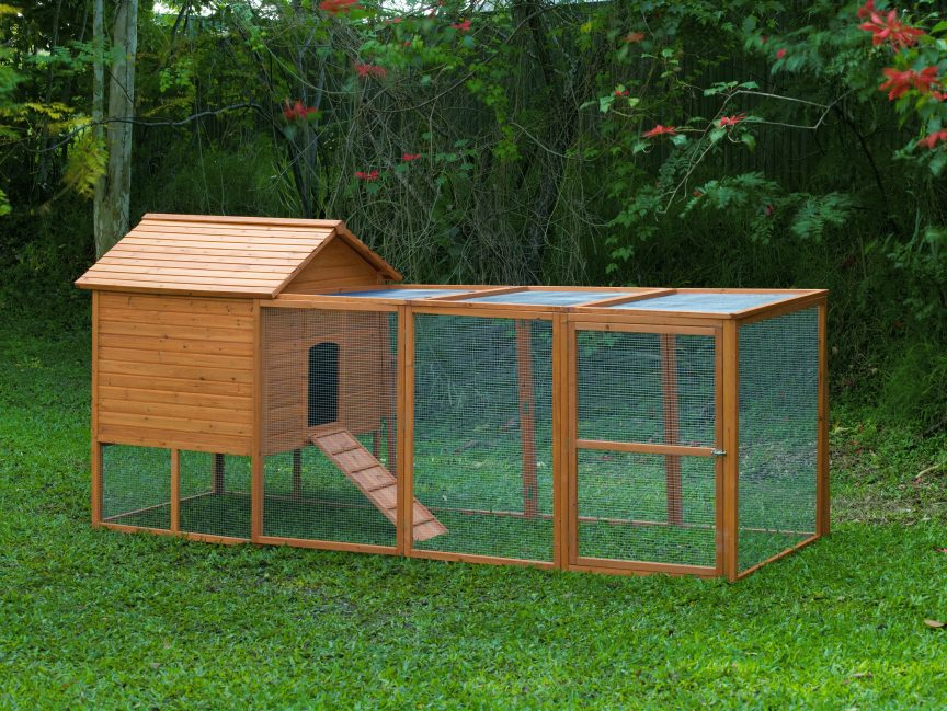 How To Build A Chicken Coop: Awesome Chicken Coops - How ...