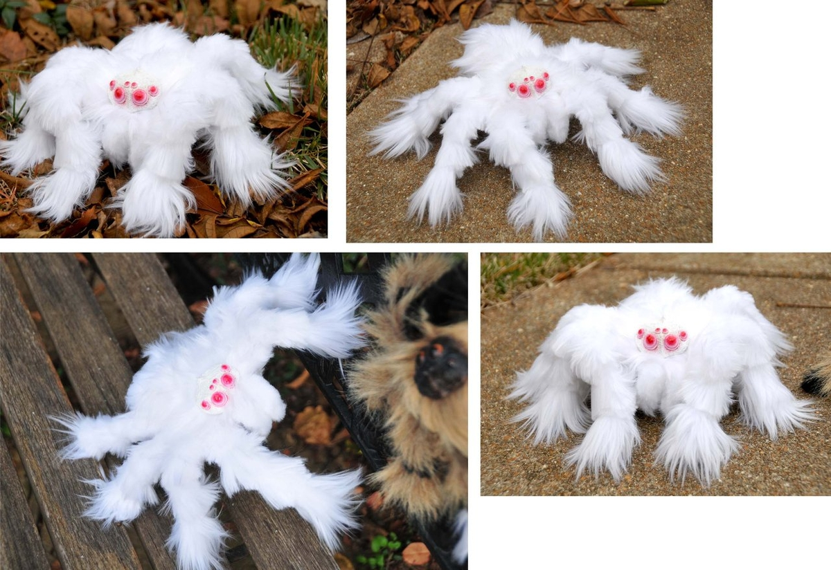 09-Albino-Spider-Jesse-Franks-Realistic-Faux-Animal-Sculptures-www-designstack-co