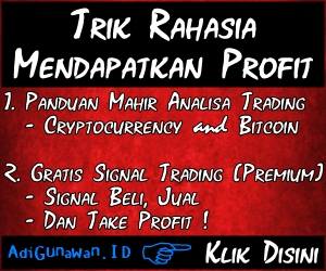 Panduan Bitcoin dan Cryptocurrency