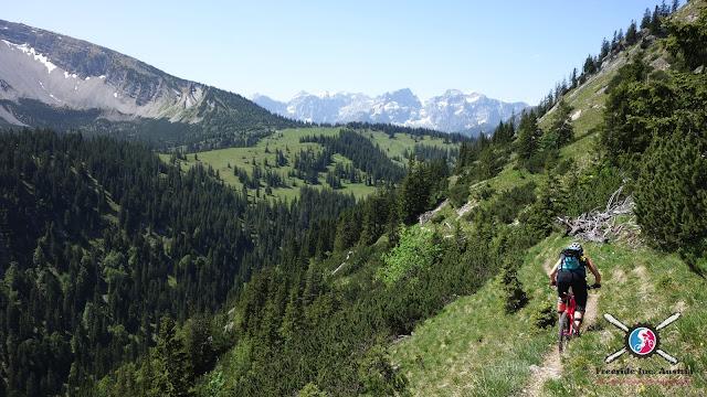 Flow Valley Trail