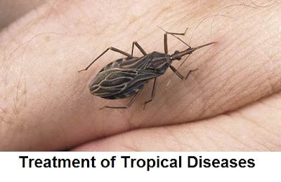 tropical diseases list, tropical infectious diseases, common tropical diseases, tropical diseases symptoms, examples of tropical diseases