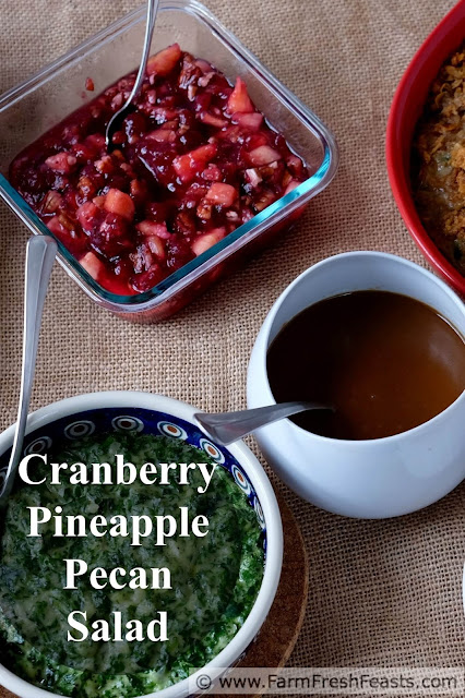 Recipe for a quick and easy 3 ingredient side dish that tastes fresh, sweet, cool and crunchy all at once. Jazz up a can of whole berry cranberry sauce with fresh pineapple and toasted pecans, and perk up your holiday table.