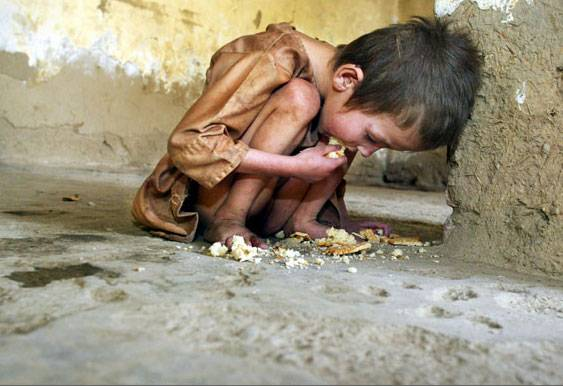 know how not wasting food can save those hungry childrenWasting Food
