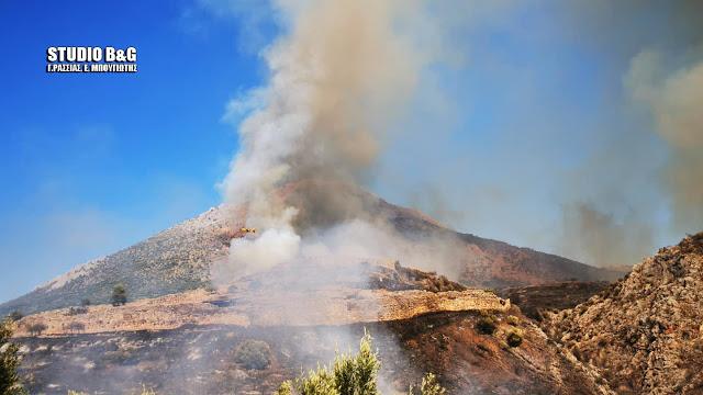 Τ λέει το Υπουργείου Πολιτισμού για την πυρκαγιά στις Μυκήνες