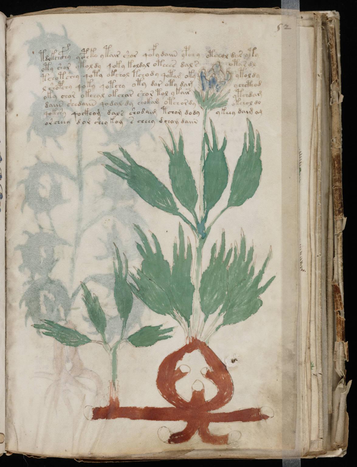 manuscrito101