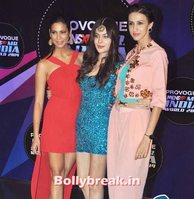 Ankita Shorey, Ankita Shorey, Others at Mr India World 2014