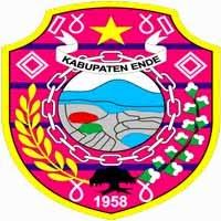 Gambar untuk Pengumuman Hasil Seleksi Administrasi CPNS 2014 Kabupaten Ende