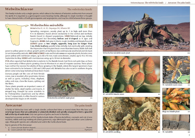 Sample pages of Le Roux and Müller's Field Guide to the Trees & Shrubs of Namibia Second Edition