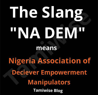 Nigeria Association of Deceiver Empowerment Manipulators (NA DEM)