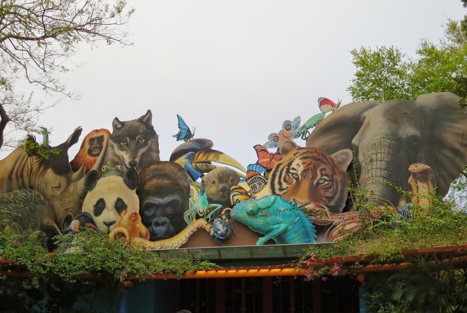 Animal Kingdom Animal Planet Animal World Free Animal: Disney Musings: Animal Kingdom