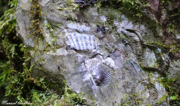 Lungo il sentiero per la Catarata de Gocta