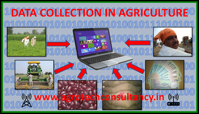 Accurate data collection will boost the agriculture, Data Collection in Agriculture , Accurate data collection in agriculture, efficient data collection in agriculture, Indian agriculture industry, Indian agriculture problem, Indian Farmers, distress selling in india, sustainable agriculture, agriculture loan, Agri Business Consultancy, Agriculture, agriculture news, agriculture policy, Doubling farmer income, Indian agriculture, Indian agriculture economics, Indian agriculture problem, MSP (Minimum Support Price in India), Aeroponic Cultivation Consultancy, Agri Business Consultancy, Agribusiness Consultancy, Agribusiness Investment In India Consultancy, Agribusiness Manpower Consultancy, Agribusiness Market Research, Agribusiness Professional Recruitment Consultancy, Agribusiness Project Report, Agricultural Consultancy, Agricultural Mechanization Consultancy, Agricultural Project report, Agriculture, agriculture commodities exchange. Indian Agriculture, Agriculture Commodity Procurement Planning, Agriculture Consultancy, Agriculture Content Writing, Agriculture Export to Russia Consultancy, Agriculture Implements Consultancy, Agriculture Industry Research Report, Agriculture Land Selection Consultancy, agriculture loan, Agriculture Market Research, agriculture news, agriculture policy, Agriculture Project Report, Agriculture Technology Exposure Tour, Agriculture Tour, Agriculture Training, agriculture value chain, aloevera, aloevera agriculture, aloevera cost of cultivation, aloevera cultivation, Aloevera cultivation consultancy, aloevera cultivation in Rajasthan, aloevera profit, aloevera use, Aromatic Plantation Consultancy, automobile insurance policy, Beekeeping or Apiculture Consultancy, benefit of agriculture processing, Bio Diesel Crop Plantation Consultancy, Biofuel Crop Cultivation Consultancy, Blockchain technology in agriculture, car insurance, Corporate Social responsibility- CSR (Rural Development) Activity Project Consultancy, Corporate Social Responsibility-CSR Agriculture Consultancy, Dairy Farming Consultancy:-, Doubling farmer income, Exotic Vegetable Cultivation Consultancy, Export Import Of The Agricultural Commodity, farm subsidy, farmer, Farmers, farming, Flower Cultivation/ Floriculture consultancy, Food Processing Industry Consultancy, get a auto insurance quote, get auto insurance online, get auto insurance quote online, Green House Consultancy, Guar Gum Cultivation Consultancy, Guar Gum Processing Consultancy, Guar Gum Seed Cultivation Consultancy, Guar Seed Cultivation Consultancy, high tech agriculture, Horticulture Consultancy, Hydroponics Consultancy, Hydroponics Cultivation Consultancy, Indian agriculture, Indian agriculture economics, Indian agriculture problem, Indian agriculture problem., instant auto insurance quote, Irrigation Management Consultancy, Jatropha Oil Sourcing Consultancy, land use efficiency in agriculture, Medicinal Plantation Consultancy, Minimum Support price, MSP, Mushroom Farming / Production Consultancy, natural sweetener., Neem Oil Sourcing Consultancy, Olive Cultivation Consultancy, organic agriculture, Organic Agriculture Consultancy, Organic Certification Consultancy, organic farming, Organic Farming Consultancy, organic farming in India, organic farming methods, Plant Tissue Culture Laboratory Consultancy, Poultry Farming Consultancy, profitable agriculture, small land holdings, Soil and water Testing Consultancy, Spices Cultivation Consultancy, stevia, stevia cultivation, Stevia Cultivation Consultancy, stevia cultivation in India, stevia farming, stevioside, stray animal, Stray cattle /animal management in agriculture, Supply Chain Report Of Agriculture Commodities, Urban Agriculture Consultancy, Vegetables Cultivation Consultancy, Vermicompost Production Consultancy, Vermi compost Sourcing Consultancy, what is organic food, what is stevia, एलोवेरा, ग्वारपाठा