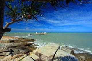 Pantai Tikus