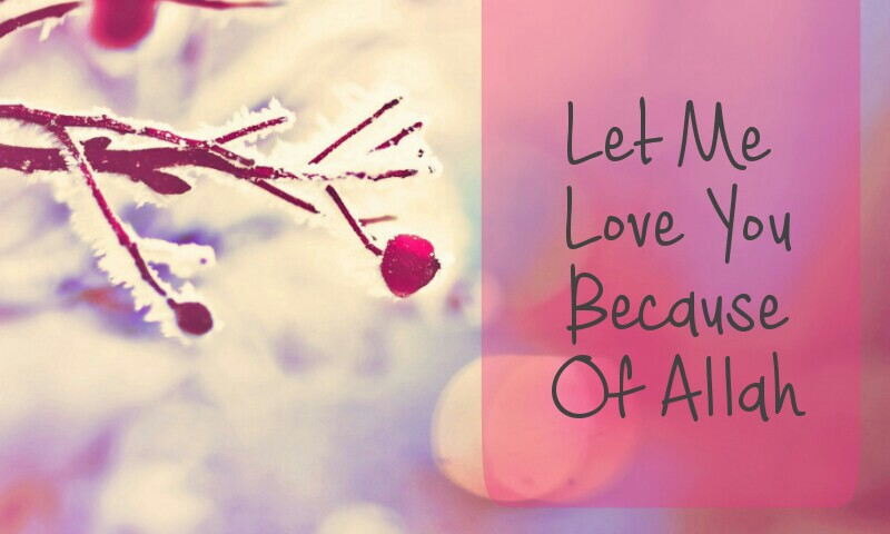 Let Me Love You Because of Allah
