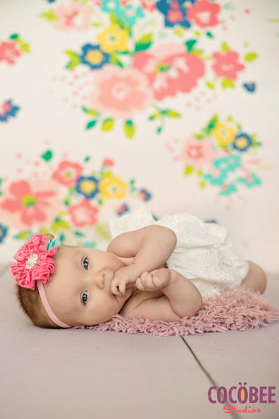 6 month baby girl milestone session