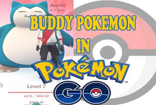 Pokemon Go Update : Buddy Pokemon Pilih Pokemon Terbaik Sekarang