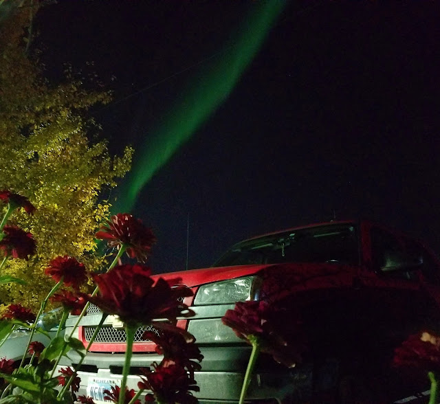 Northern lights shows outside my house