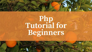 php tutorial for beginners