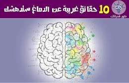10 حقائق غريبة عن الدماغ ستدهشك