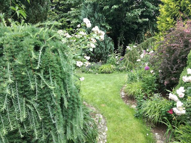 podział przestrzeni w ogrodzie, ścieżki w ogrodzie