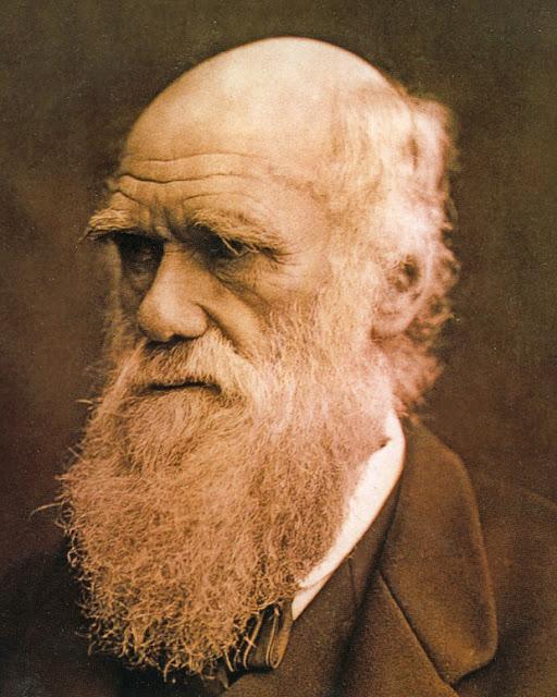 ¿Darwin ha dejado una teoría solamente? ¿O es algo certero?