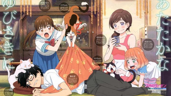 Sekarang di tahun kedua sekolah menengahnya, Rei Kiriyama terus mendorong perjuangannya di dunia shogi profesional dan juga kehidupan pribadinya. Dikelilingi oleh kepribadian yang dinamis di aula shogi, klub sekolah, dan di komunitas lokal, kulit soliternya perlahan mulai retak. Di antara mereka ada tiga saudara perempuan Kawamoto — Akari, Hinata, dan Momo — yang menjalin ikatan kasih sayang dan kekeluargaan dengan Rei. Melalui ikatan ini, ia menyadari bahwa setiap orang terbebani oleh kesulitan emosional mereka sendiri dan mulai belajar bagaimana bergantung pada orang lain sambil mendukung mereka sebagai imbalan.