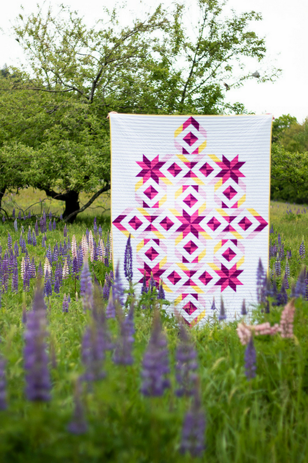 Tribal Diamond Quilt in a field | 2019 Quilter's Planner | Shannon Fraser Designs | Photo by Kitty Wilkin of Night Quilter