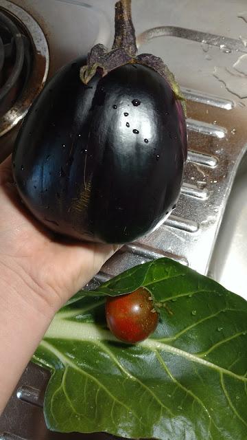 Mitoyo Eggplant, tiny Paul Robeson Tomato, Swiss Chard
