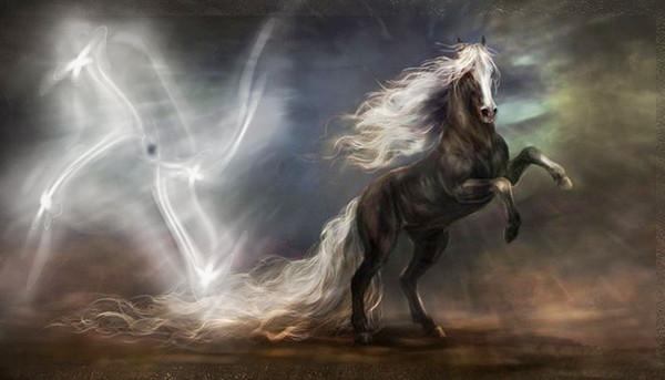 Fond d 39 cran chevaux anim fonds d 39 cran hd - Chevaux gratuits ...