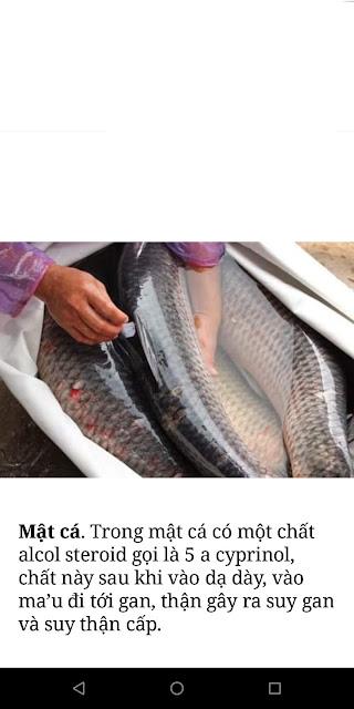 Mật cá