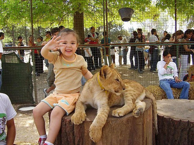 Kebun Binatang Paling Bahaya