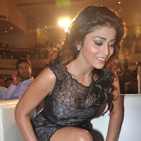 Shriya Saran Latest Hot in Life Is Beautiful