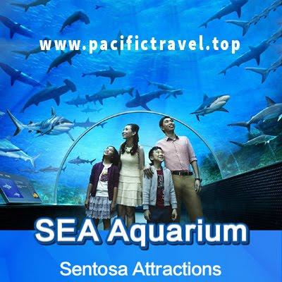 Du lịch Singapore 4 ngày 3 đêm dịp hè 2017 khởi hành từ Sài Gòn