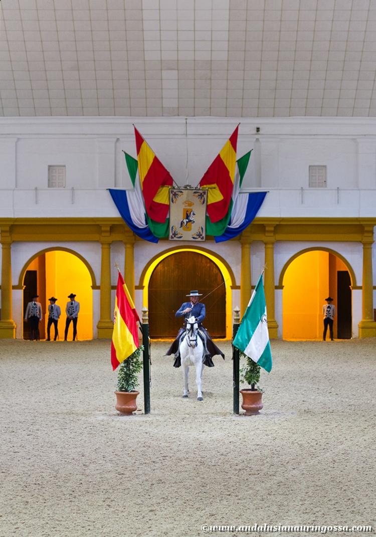 Andalusian kuninkaallinen hevoskoulu Jerez_Andalusian Royal Equestrian School Jerez_2