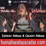 http://www.humaliwalayazadar.com/2016/10/zaheer-abbas-qasim-abbas-nohay-2017.html